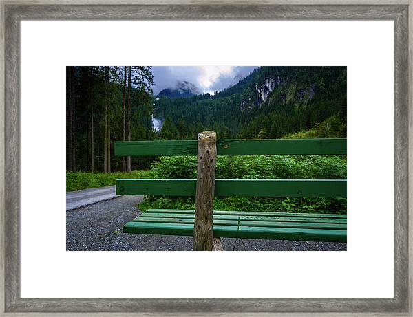A Bench In The Woods Framed Print