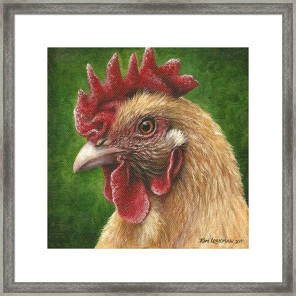 A Chicken For Terry Framed Print