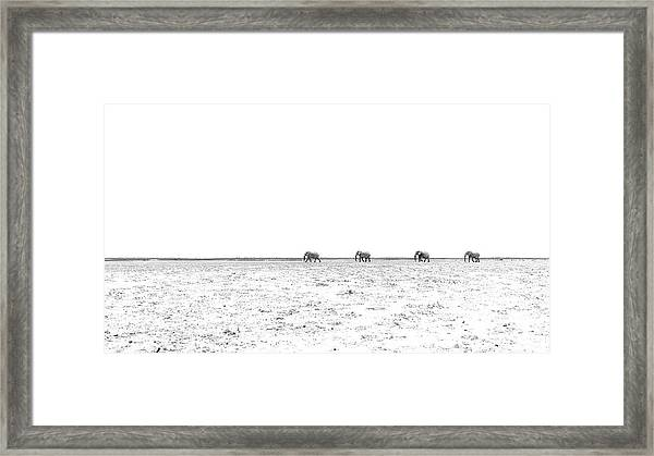 A Long Dusty Road Framed Print