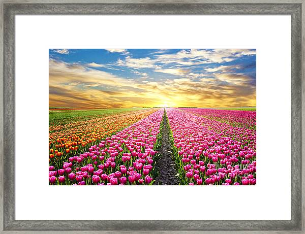 A Magical Landscape With Sunrise Over Framed Print