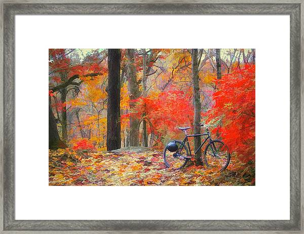 A Nice Place To Stop Framed Print