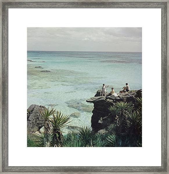A Nice Spot For Lunch Framed Print