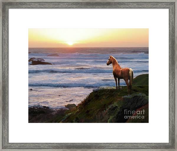 Framed Print featuring the digital art A Palomino Sunset by Melinda Hughes-Berland