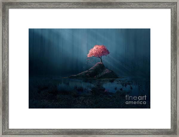 A Single Pink Tree In A Dark Blue Framed Print