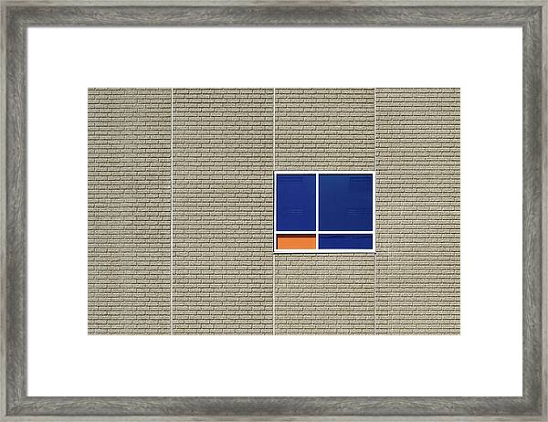 A Splash Of Orange Framed Print