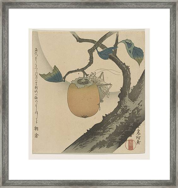 A Surimono Of An Insect On A Persimmon Framed Print