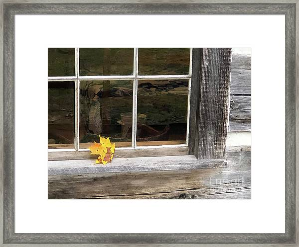A Thoughtful Moment  Framed Print