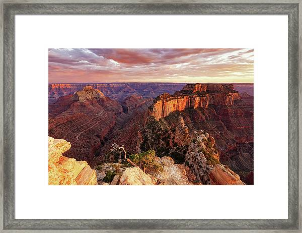 A View From Cape Royal Framed Print