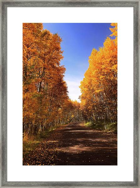 A Walk Down Memory Lane Framed Print