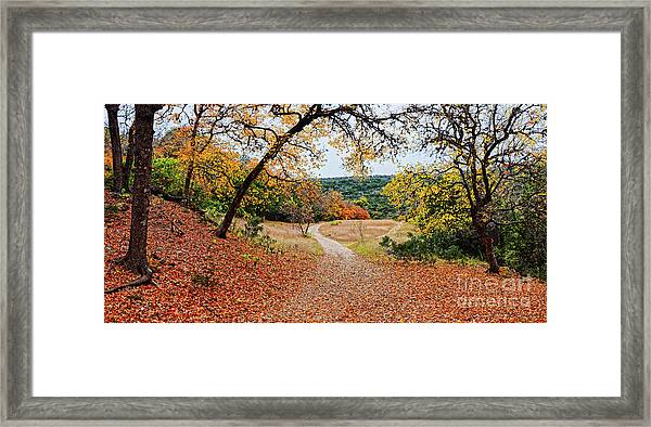 A Walk Through The Maple Forest At Lost Maples State Natural Area - Vanderpool Texas Hill Country Framed Print