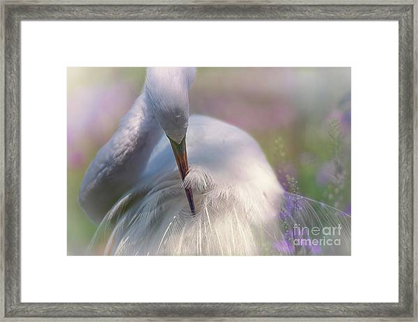 A Zen Moment Fine Art Photography By Mary Lou Chmura Framed Print