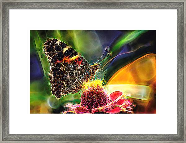 Abstract Painted Lady Butterfly Framed Print