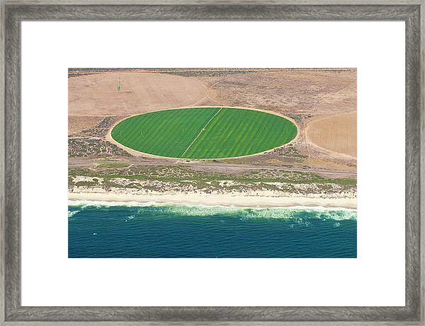 Aerial View Of A Potato Crop Circle On Framed Print
