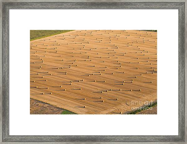 Aerial View Of  Harvest Field Framed Print
