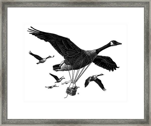 Framed Print featuring the drawing Aero Canada - Bw by Clint Hansen