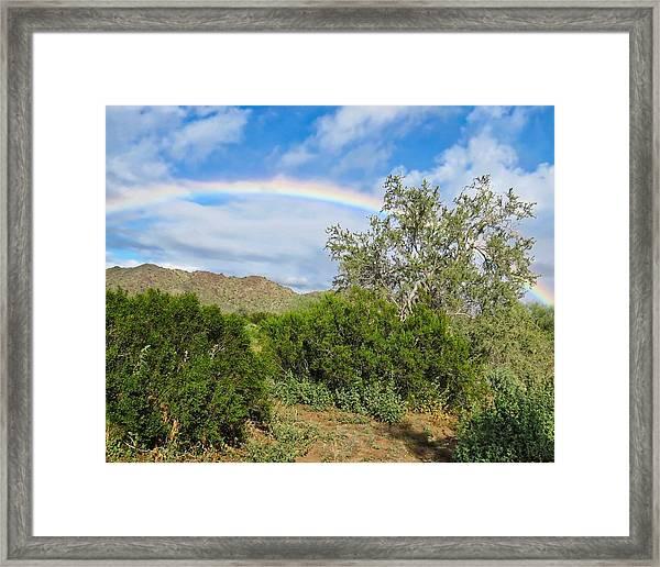 After An Arizona Winter Rain Framed Print