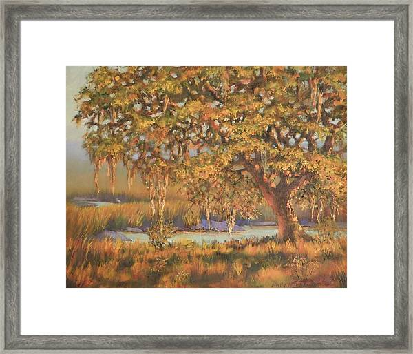 Afternoon Glow Framed Print