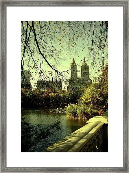 Afternoon In Central Park Framed Print