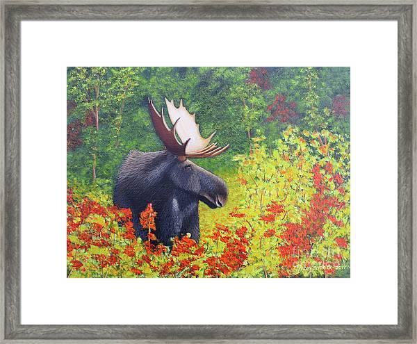 Afternoon Munch Framed Print