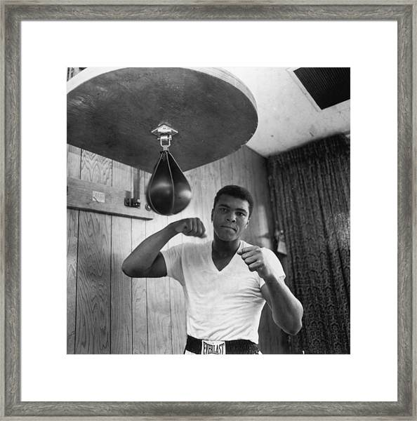 Ali In Training Framed Print