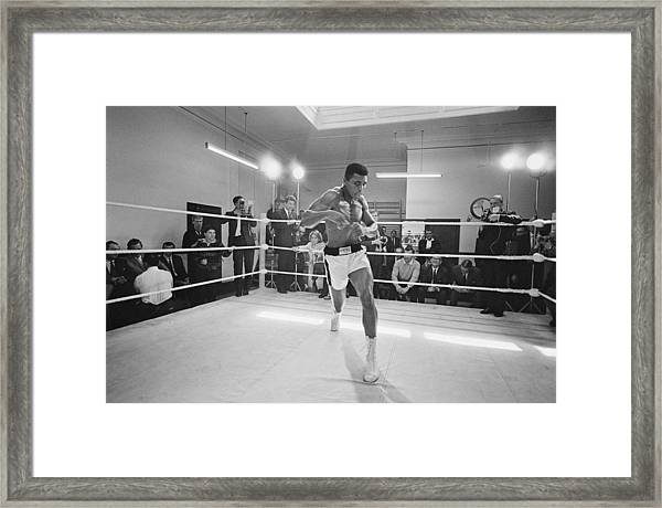Ali In Training Framed Print
