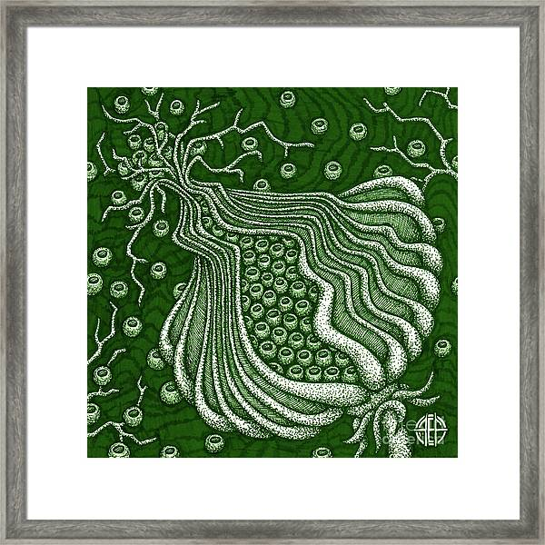 Framed Print featuring the drawing Alien Bloom 5 by Amy E Fraser