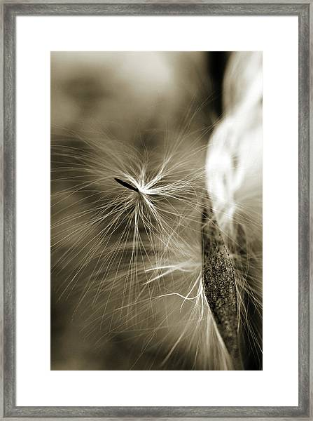 Almost Framed Print