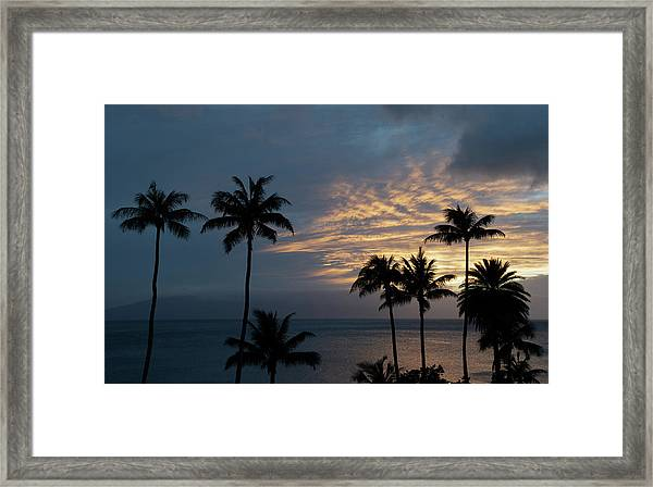 Aloha And Goodbye Framed Print