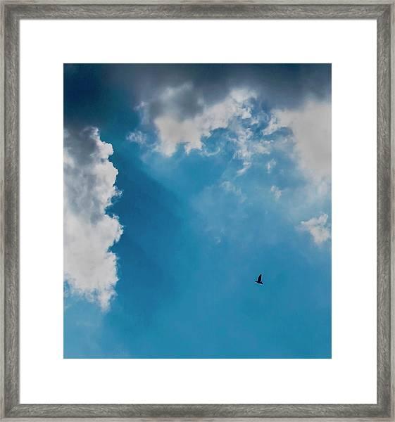 Colours. Blue. Alone. Framed Print