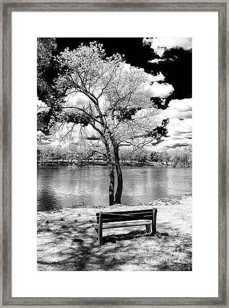Along The River At Washington Crossing In New Jersey Framed Print by John Rizzuto