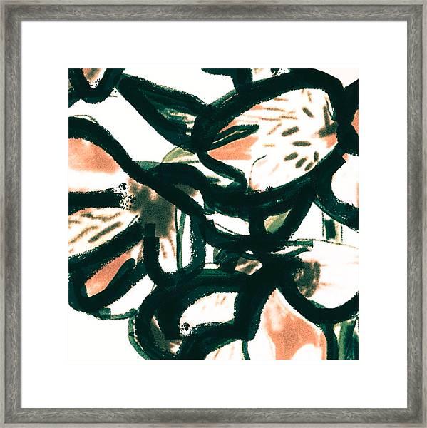 Alstroemerias Framed Print