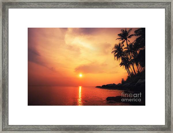 Amazing Colors Of Tropical Sunset Framed Print