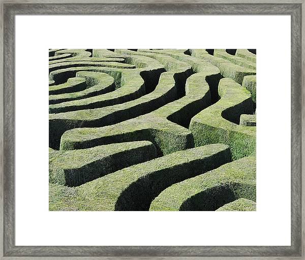 Amazing Maze Framed Print by Oversnap