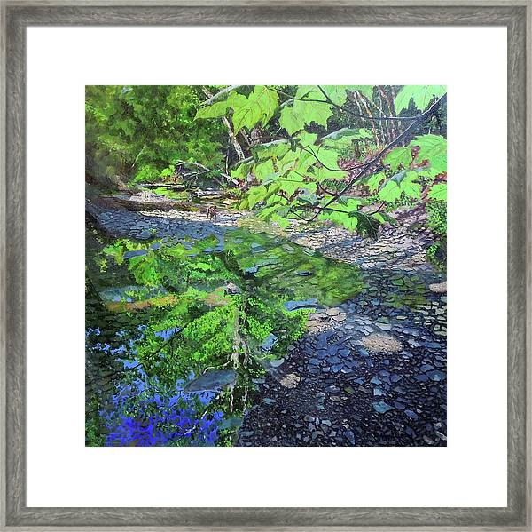 Amberley Creek 3 Framed Print