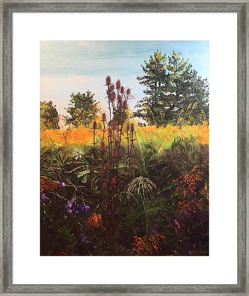 Amberley Green 1 Framed Print