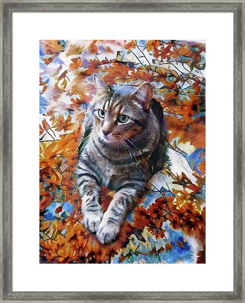 Amos In Flowers Framed Print