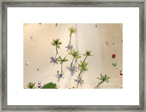 An Aerial View Of People Relaxing On A Framed Print