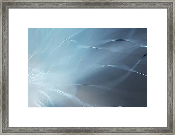 Angels Wing Framed Print