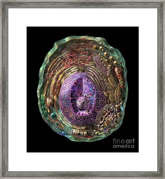 Animal Cell Framed Print