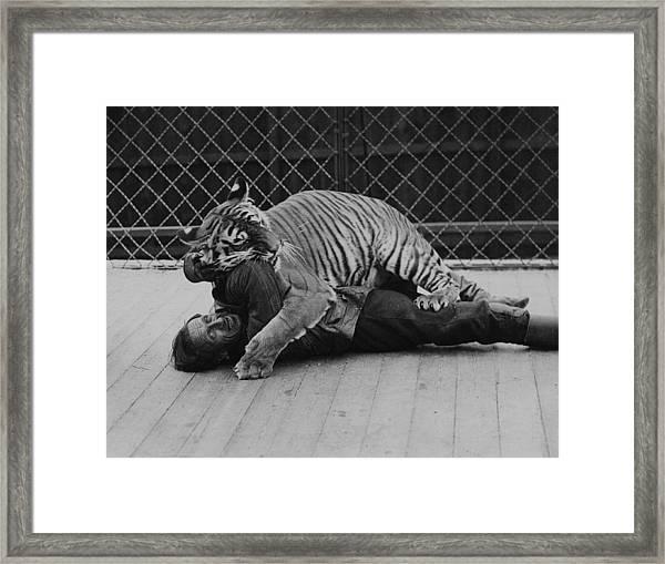 Animal Trainer Framed Print