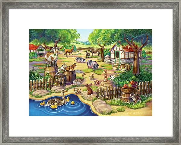 Animals At The Petting Zoo Framed Print