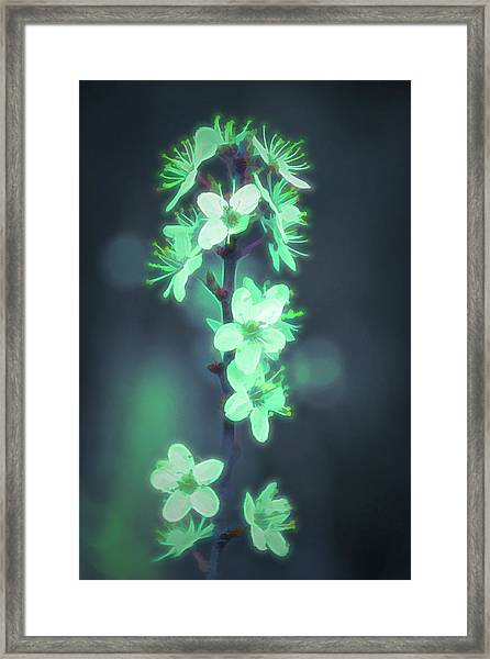 Another World - Glowing Flowers Framed Print