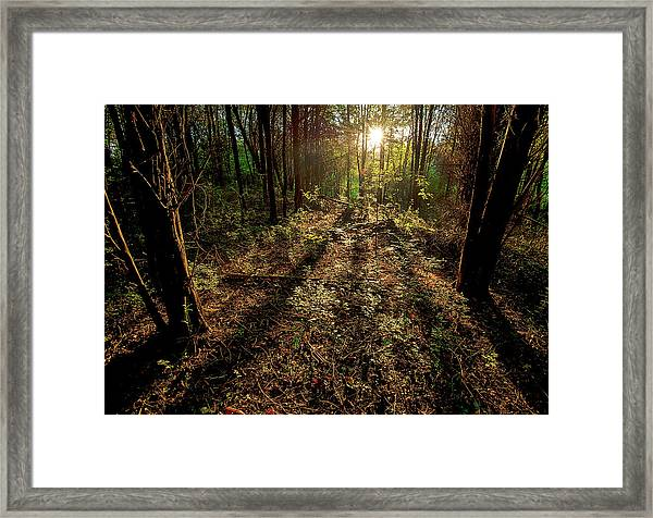 Appalachia Morning Framed Print