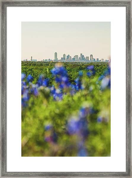 April In Dallas Framed Print