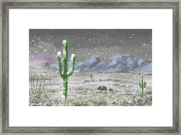 Arizona Blizzard Framed Print