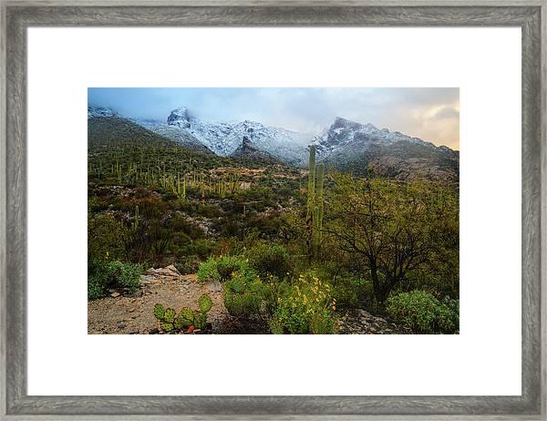 Arizona Winter Light Framed Print