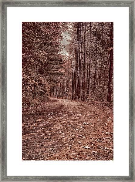 Around The Corner Framed Print