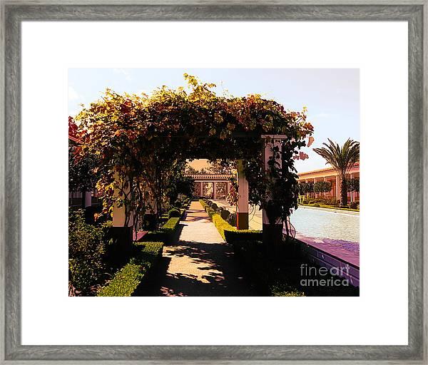 Artistic Courtyard Getty Villa  Framed Print