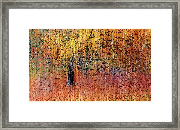 Asian Impressions Framed Print