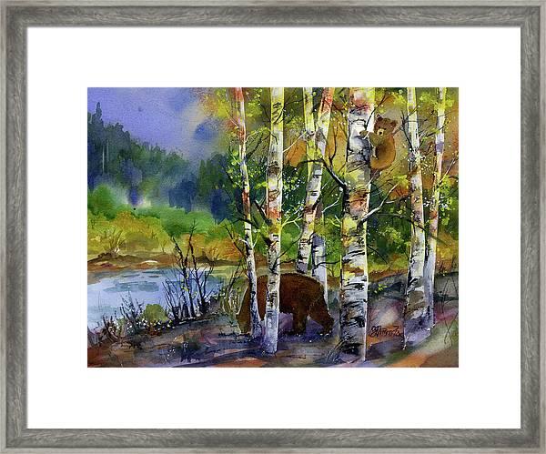 Aspen Bears #2 Framed Print
